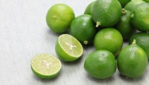 メキシコ産 フレッシュ キーライム ( メキシカンレモン) 4.5kg